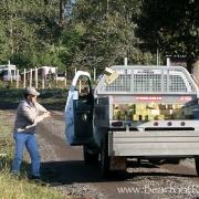 homedepot-20111020-213513-img_0748