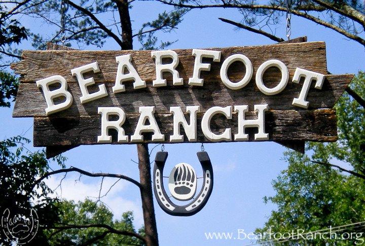 Bearfoot Sign Photo