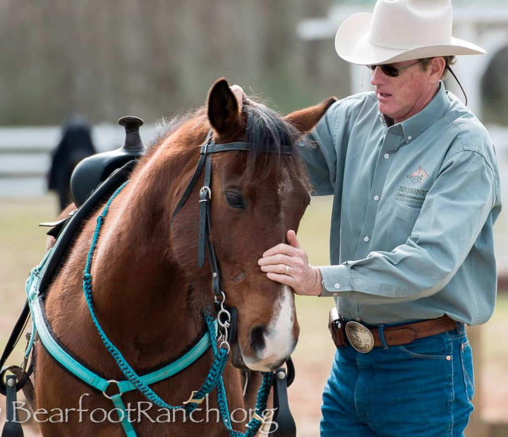 Ed Dabney Horsemanship Clinics & Events
