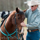 Forsyth County Therapy Barn Gives B...