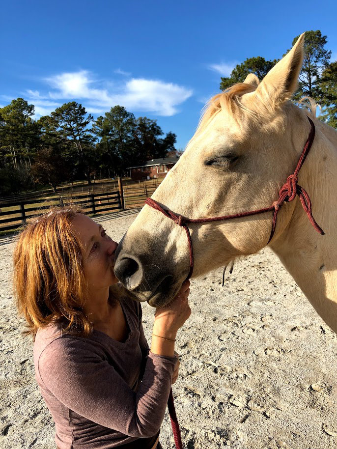 Tibo the rescue horse and Lydia